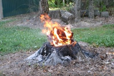 How to remove a tree stump by fire and charcoal