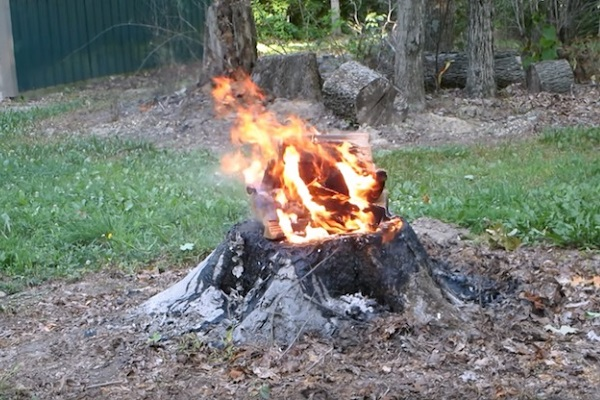 How To Remove A Tree Stump With Fire